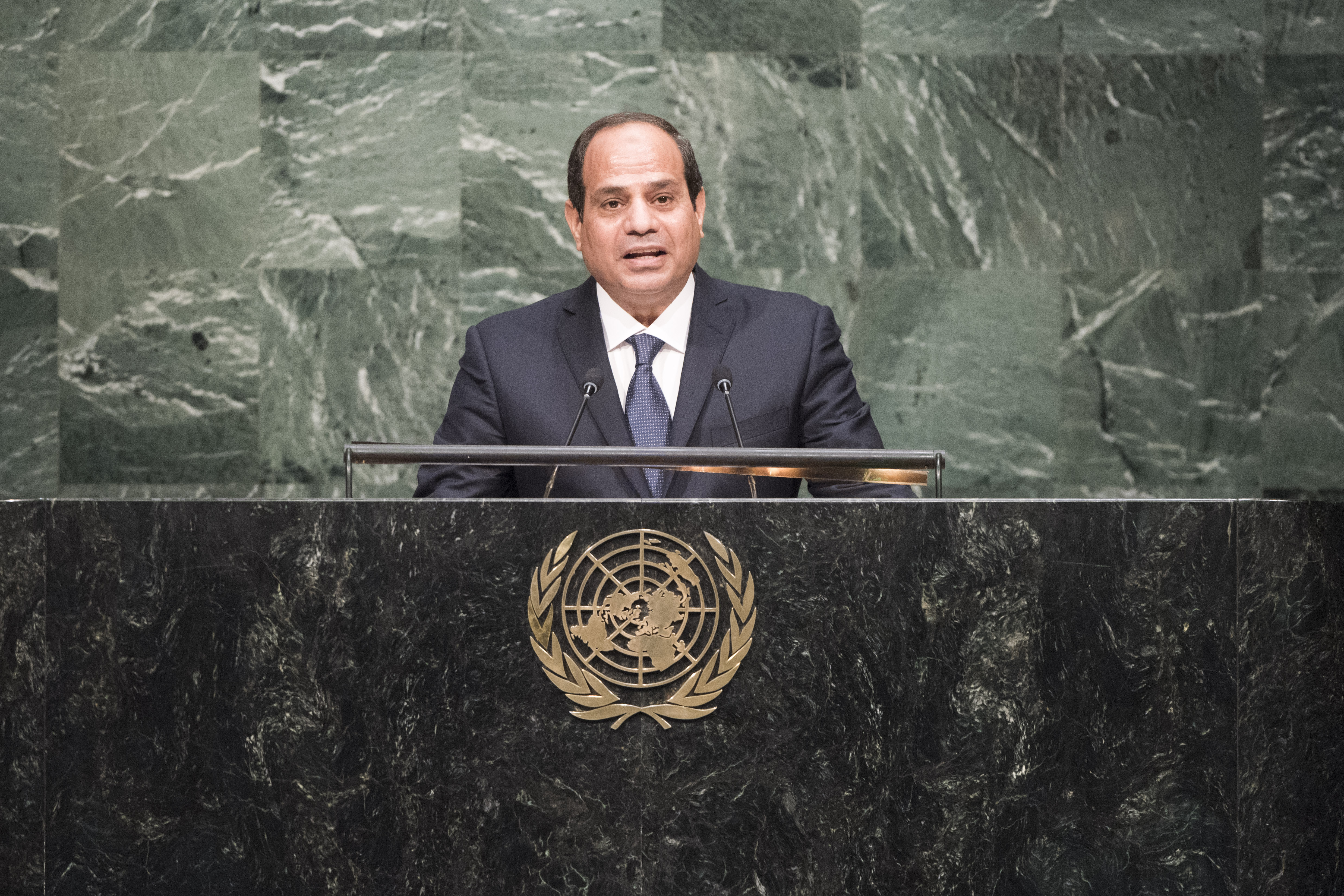Egyptian President Al Sisi (photo credit: United Nations photo/flickr)