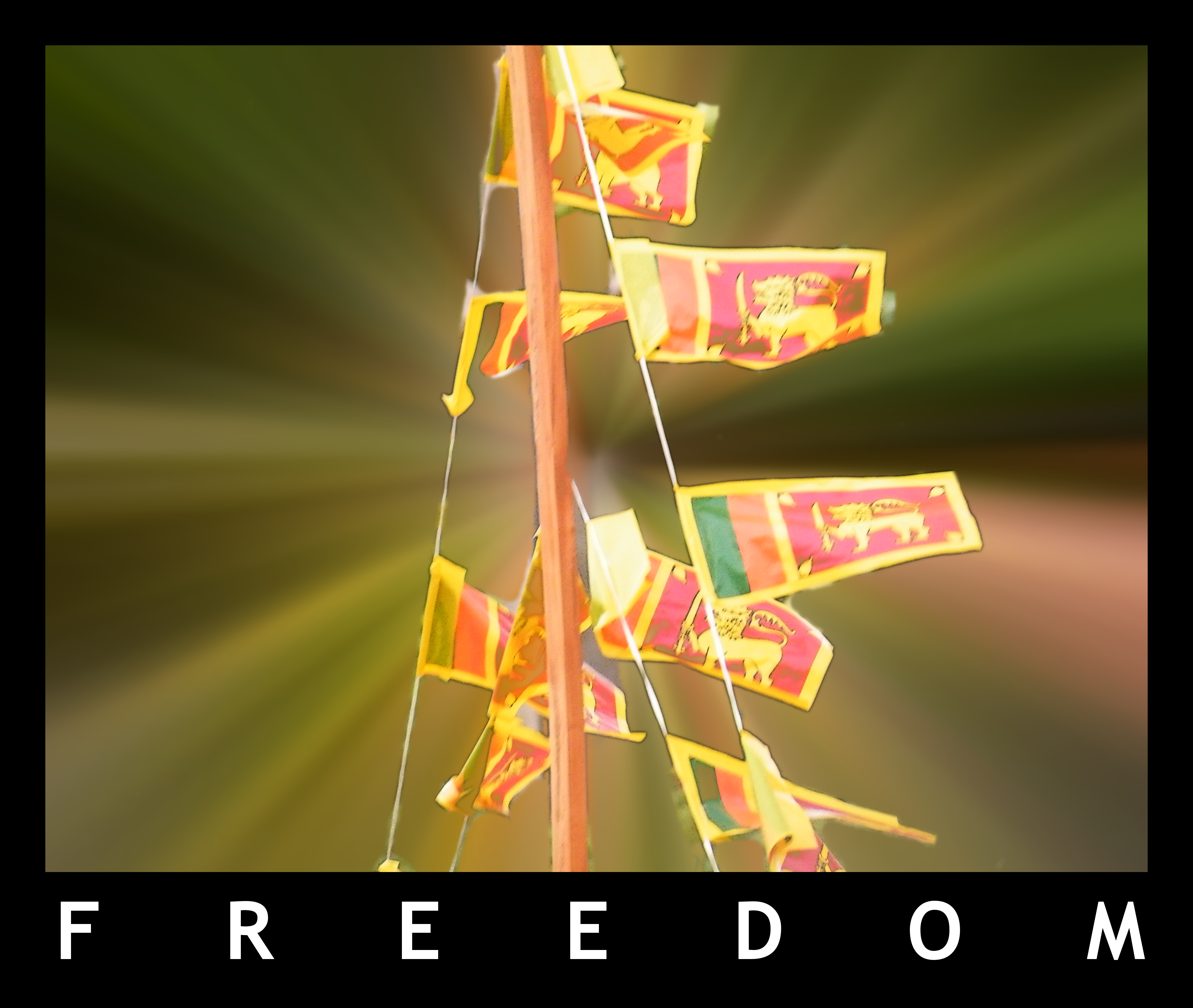 Flag of Sri Lanka (photo credit: Nishan/Flickr)